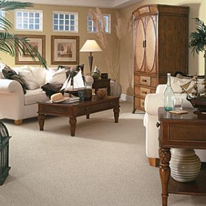 Carpet Cleaners Kansas City